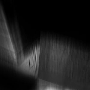 miald safabakhsh photography