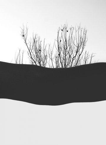minimalism phpoto